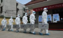 Bird Flu Officially Arrives in Beijing, Days Behind 'Rumors'