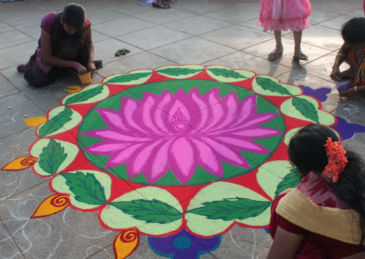 Reminiscent Tales Of Indian Lotus Flower