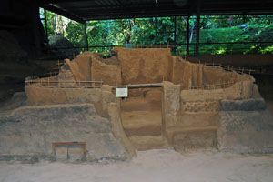 Buried Mayan Village Yields New Insights Into Ancient Agriculture