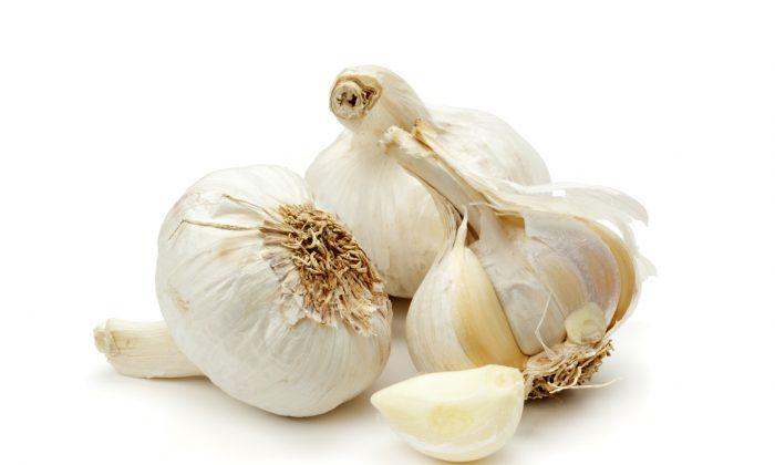 Garlic is effective against notoriously resistant strains of bacteria like staphylococcus and salmonella. (eyewave/Photos.com)