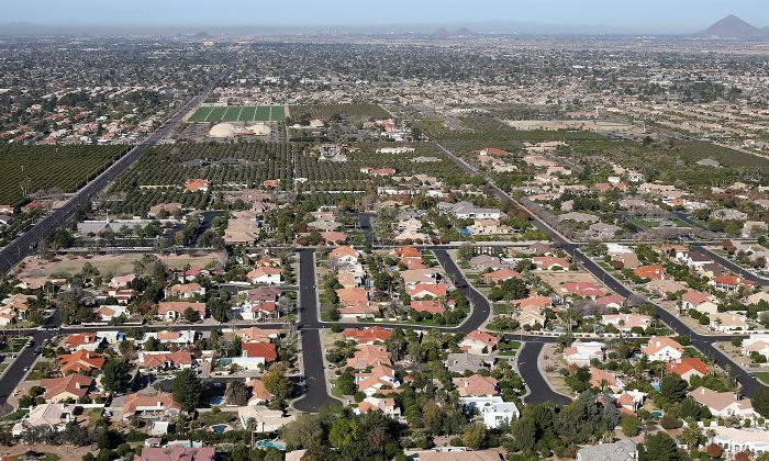 Rows of homes in Mesa, Arizona. (Justin Sullivan/Getty Images)