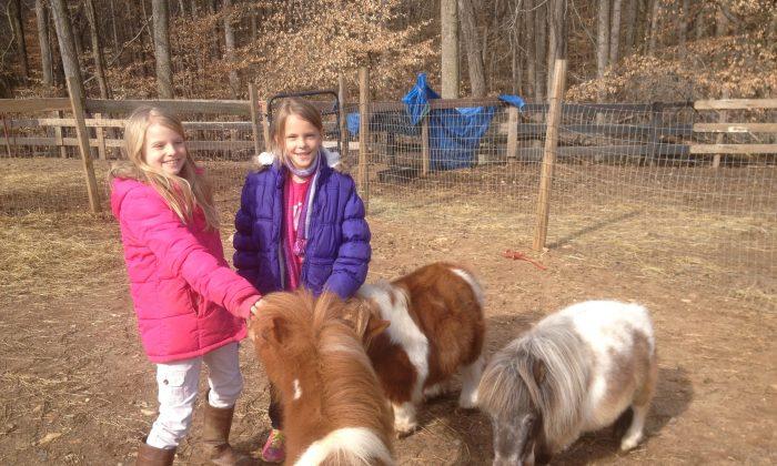 Sarah Lee, age 8, and Bekah Dirrim, age 9, play with ponies at Barn Buddies. (Kathy Lee/Barn Buddies)