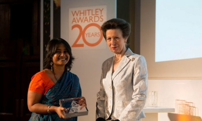 2013 Whitley Award Winner Aparajita Datta receiving her award from the Princess Royal, Patron of the Whitley Fund for Nature, at The Royal Geographical Society in London, on May 2, 2013. (Courtesy of the Whitley Fund for Nature)