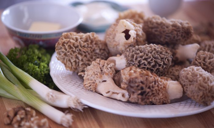 Morel mushrooms, cleaned and ready for cooking. (Cat Rooney/The Epoch Times)