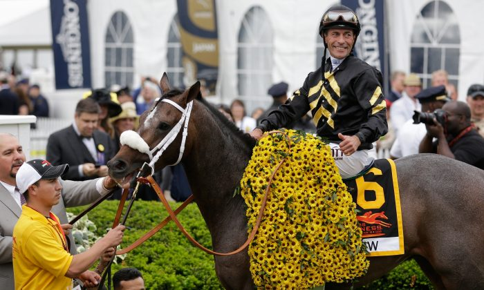 Gary Stevens smiles atop of Oxbow 6 in Winners Circle after winning the 138th running of the Preakness Stakes at Pimlico Race Course on May 18, 2013 in Baltimore, Maryland. (Rob Carr/Getty Images)