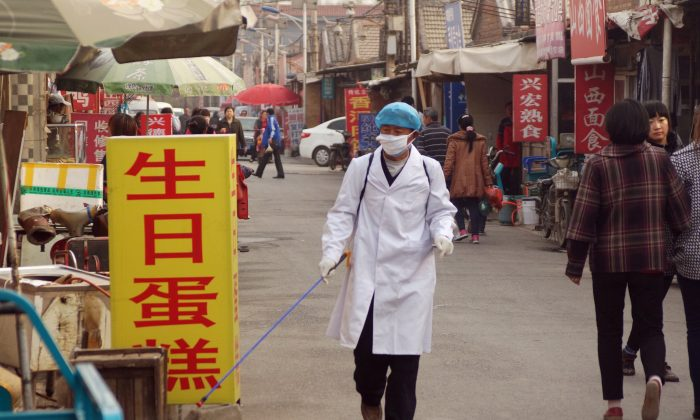A health worker sprays disinfectant near the house of a 4-year-old boy infected with the H7N9 strain in Beijing on April 15, 2013. New research shows that the H7N9 bird flu virus spreads between ferrets in close contact with each other, suggesting human-to-human transmission is possible. (ChinaFotoPress/Getty Images)
