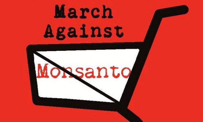 On May 25, 2013, activists from 400 cities around the world will unite for the March Against Monsanto. Facebook RSVPs alone suggest over 2 million marchers. (Logo by Emilie Rensink)