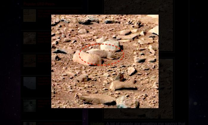 Mars Rat: Website Claims Rodent on Red Planet