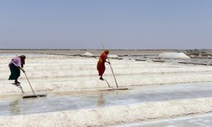 Indian salt pan workers salvage salt from flooded salt pans near Odu village in the Little Rann of Kutch region, some 150 kms from Ahmedabad, in first week of May, 2013. Recent unseasonal rains in the region have washed away tons of precious salt in the Little Rann of Kutch region of Gujarat state which was being readied for harvest, ruining the livelihood of hundreds of already poverty-striken salt pan workers. Gujarat accounts for 70 percent of India's salt production. (SAM PANTHAKY/AFP/Getty Images)