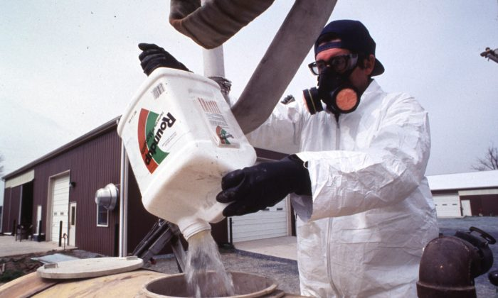 A farm worker handles common pesticide used in food production. The Environmental Protection Agency (EPA) is expected to raise limits for residue levels of glyphosate—a key ingredient in the widely used herbicide Roundup, produced by seed and chemical giant Monsanto. (USDA)