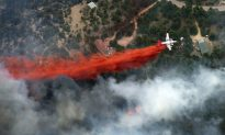 Q & A: What's Going on with the Wildfires in the US?