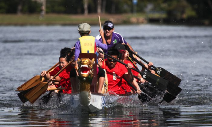 Once a year, the Dragon Boat Festival boat race and multicultural festival celebration is sponsored by the Queensland Hakkas. This year's festivities were held June 2 at Brisbane Forest Lake, Queensland, Australia.  (Xu Weiliang/The Epoch Times)