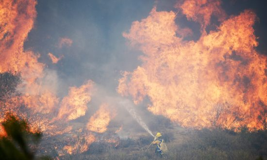 Wildfire Fighting: 'A Little Bit of an Appetite for Danger' (+Video)
