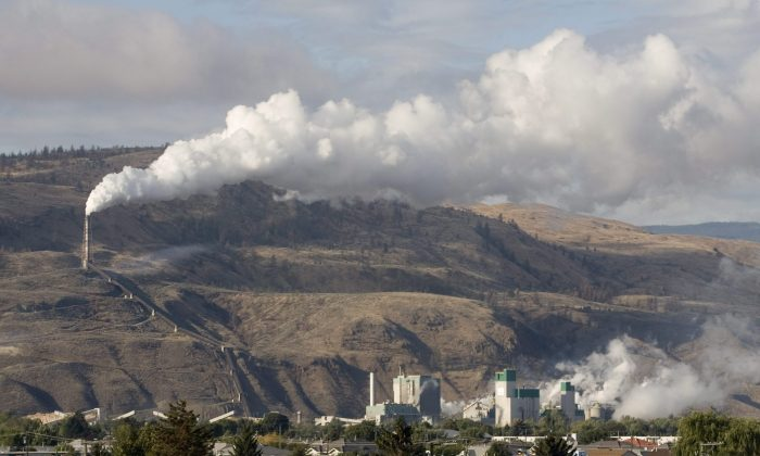 The smokestack from the Domtar pulp mill in Kamloops, B.C. A report by Environmental Defence suggests babies are exposed to chemicals in the womb because pollutants are so pervasive both in the environment and in widely used consumer products. (THE CANADIAN PRESS/Jacques Boissinot)