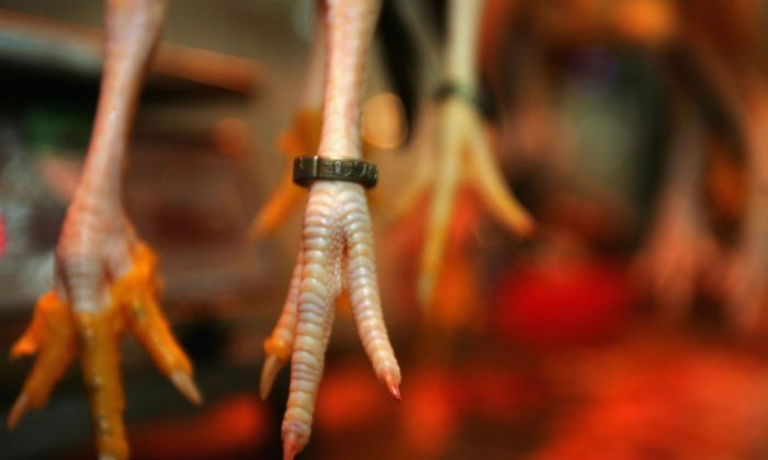 Chicken feet that expired in 1967 were spruced up with chemicals and sold in Chinese markets this year. (China Photos/Getty Images)