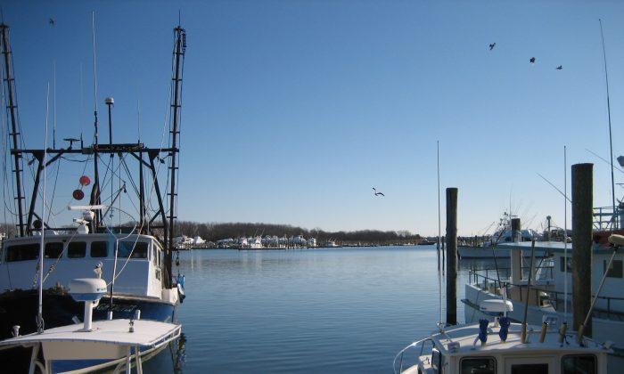Fishing boats moored at Montauk, Long Island, during winter. (Charlotte Cuthbertson)