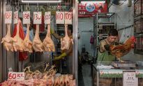 New Chinese Bird Flu May Be Worse Than H7N9 Virus