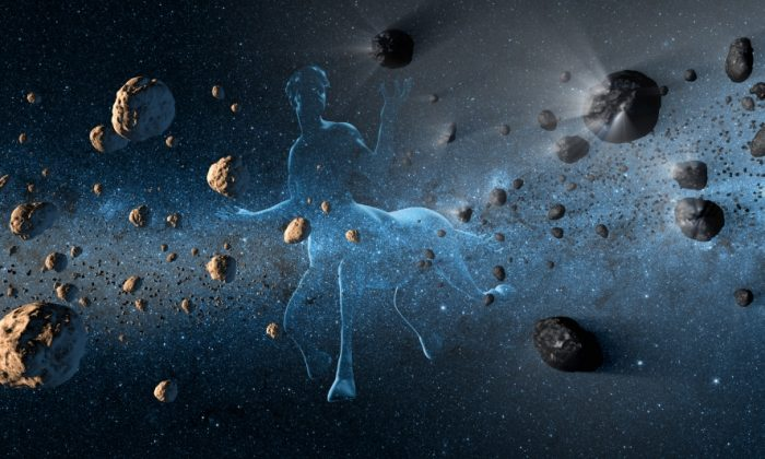 NASA WISE Telescope Could be Used to Hunt Asteroids on Collision Course