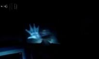 10 Credible Mermaid Sightings? (+Videos)