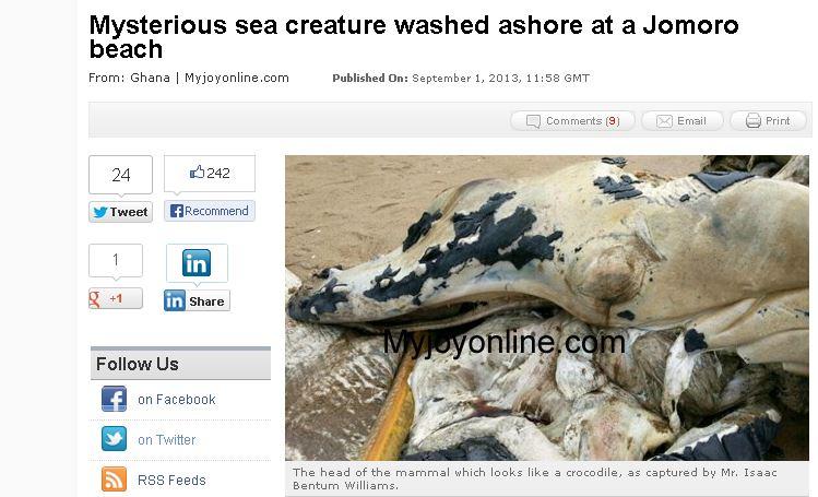 Ghana: Huge, Mysterious Mammal Appears on Asanta Beach in Jomoro District
