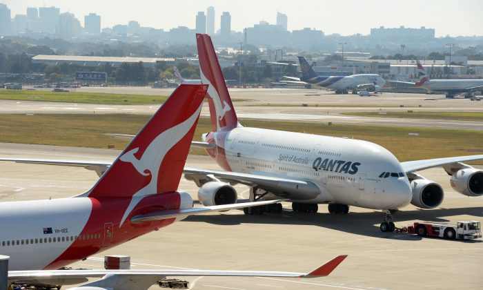 A snake hitched a ride on a Qantas flight Sunday, Sept. 22, 2013. It is the second time a snake has flown Qantas this year. (Greg Wood/AFP/Getty Images)