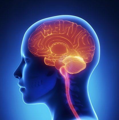 Scientists Develop 3-D Video Game to Improve Brain Skills