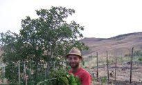 In Sicily, a Young Farmer Defies the Mafia