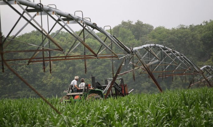 Indiana farmers ride a tractor through their cornfield. According to U.S. Department of Agriculture (USDA) Secretary Tom Vilsack, lawmakers' failure to compromise on the Farm Bill have left farmers in the lurch. (Scott Olson/Getty Images)