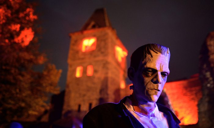 A person dressed as Dr. Victor Frankenstein's monster tries to scare visitors at Frankenstein castle on October 19, 2013, in Darmstadt, Germany. The Frankenstein monster and its creator have roots with a real-life doctor that performed Frankenstein-like experiments over 150 years ago. (Thomas Lohnes/Getty Images)