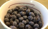 """There is no """"Singing the Blues"""" with Blueberries"""