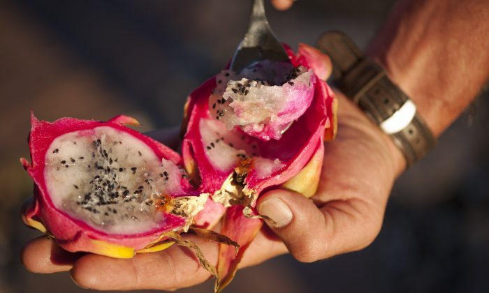 Scoop out the fruit or peel the outer casing to get to the Dragon Fruit. Photo taken on Sept. 26, 2013 in Baton Rouge, La. (Cat Rooney/Epoch Times)
