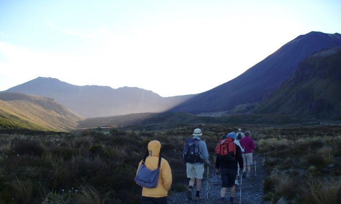 Walking the trail to Soda Springs in New Zealand's Tongariro National Park. (Wibke Carter)