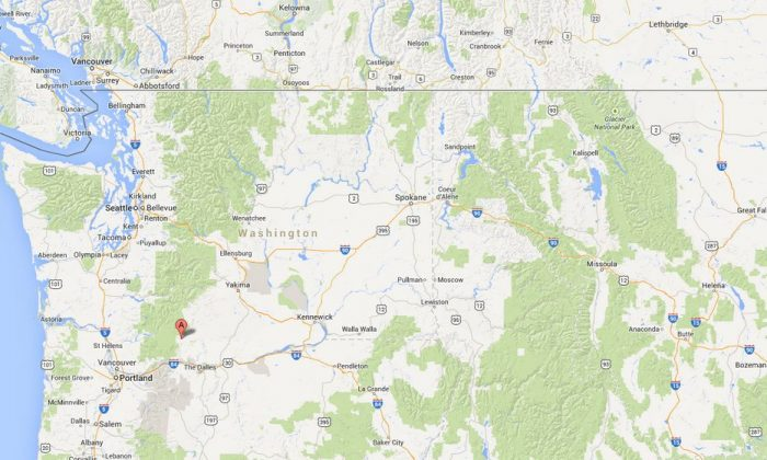 A screenshot of Google Maps shows Trout Lake in Washington state.