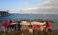 Could Beached Oarfish Be Omen of Coming California Earthquake?