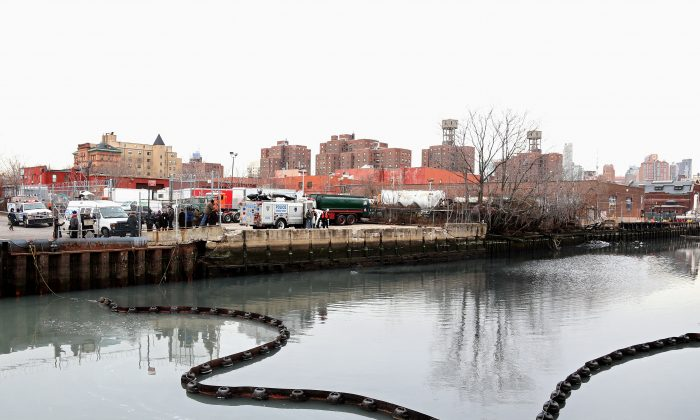 Officials stand on the side of the Gowanus Canal as a common dolphin comes up for air after getting stuck in the Brooklyn waterway, Jan. 25. (Michael Heiman/Getty Images)