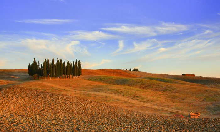 A view of the Italian landscapes taken on August 14, 2013 at the sunset countryside. (FABIO MUZZI/AFP/Getty Images)