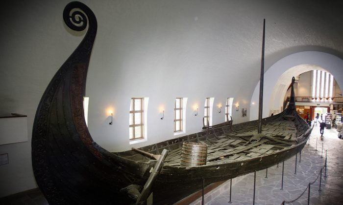 Picture shows the Oseberg viking ship at the Viking Ship Museum in Oslo. (JUNGE, HEIKO/AFP/Getty Images)