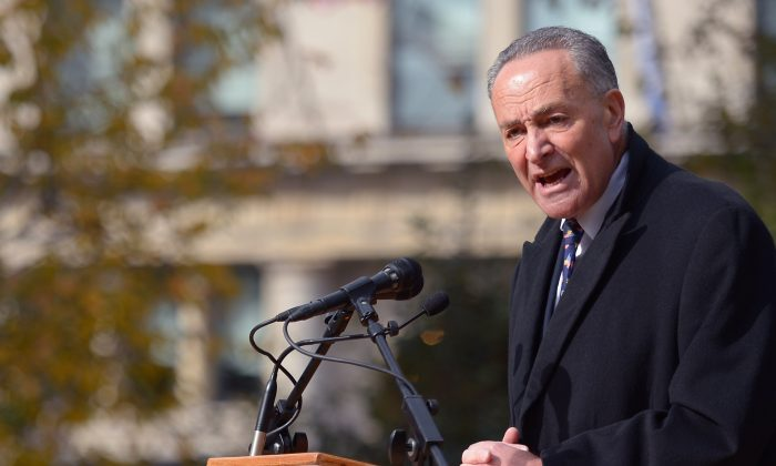 Sen. Chuck Schumer (D-N.Y.) on Nov. 11, 2013. (Michael Loccisano/Getty Images)