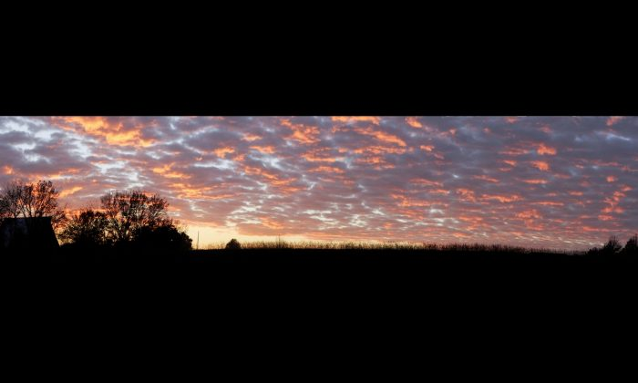 Panoramic sunset. (Cat Rooney/Epoch Times)