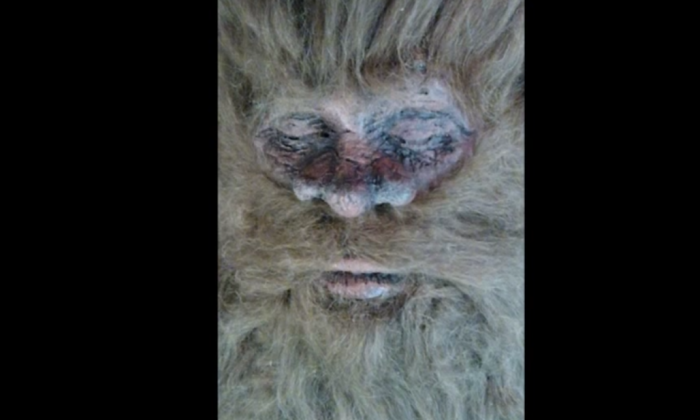 Rick Dyer Bigfoot: Man Who Perpetuated Hoax Claims He Killed Bigfoot
