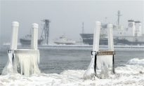 Did the Polar Vortex Make You Reconsider Climate Change?