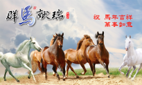 Chinese New Year 2014: Year of the Horse