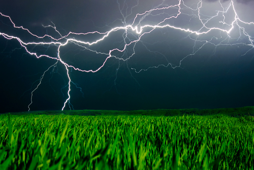 Amazing Nature: Lightning Creates Food Out of Thin Air