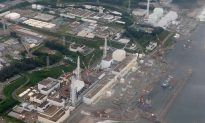 Fukushima Radiation Report Released Two Weeks After Evacuees Get the Green Light to Return