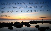 Earth Hour Today: Inspiring Environmental Quotes, Native American Proverbs