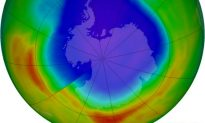 Is the Ozone Hole a Good Thing?