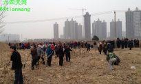 Peasants With Pitchforks Defy China's Urbanization Thrust