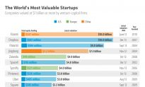 The World's Most Valuable Startups (Infographic)