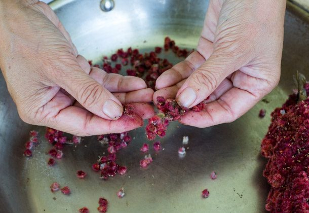 Breaking up the sumac berries. (yossy arefi/apt2bbakingco.blogspot.com)