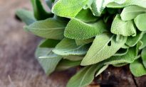 Use Sage for Headaches, Indigestion, Sore Throats, and More